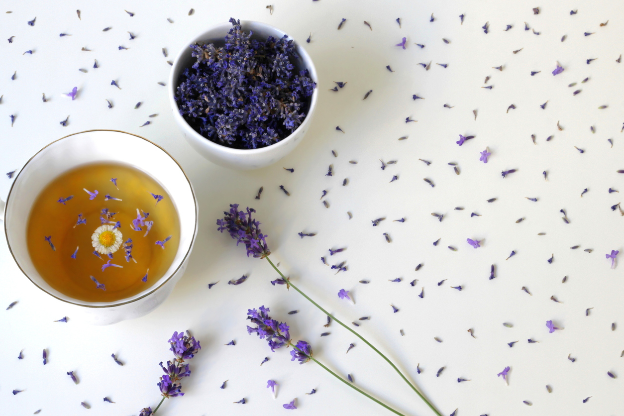 Top view of a cup of herbal tea decorated with fresh and dried lavender and camomile flower on a white background.